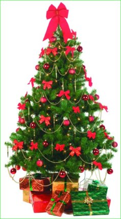 christmas-tree-decorated-766291