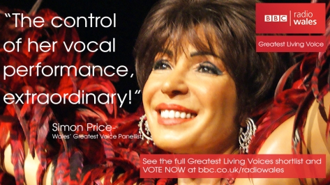 Dame Shirley Bassey - Wales Greatest Living Voice