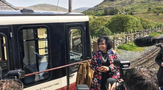 """DSB's Carriage Unveiled: """"This is beautiful. I'm going to cry in a minute"""""""